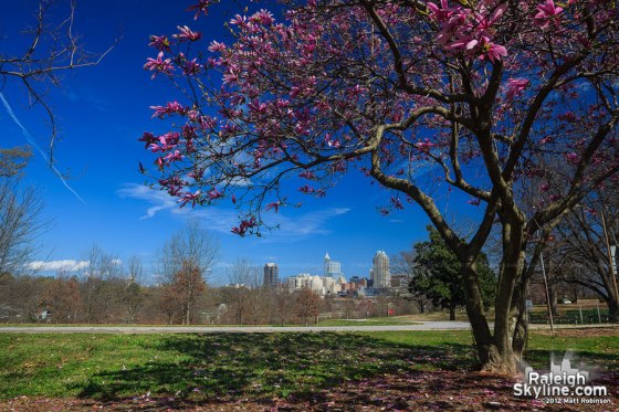 raleigh_march_14_2012_raleighskyline.com_18