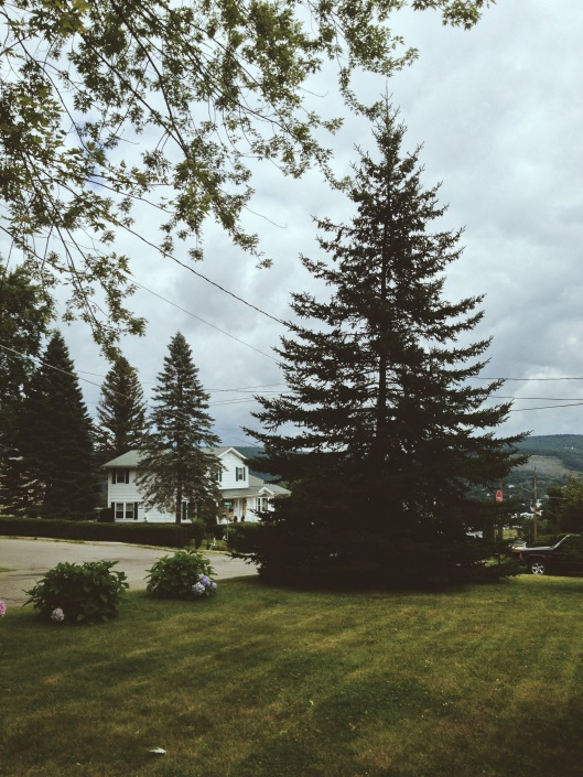 Under the Oaks blog: Upstate New York : Corning + Seneca Lake Wineries #fingerlakeswinecountry