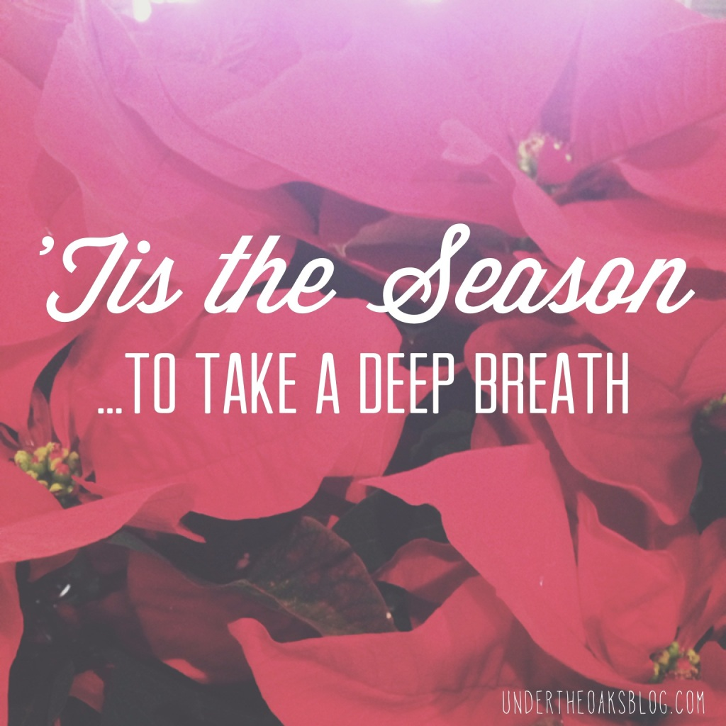 Under the Oaks blog: The Importance of Breathing during December