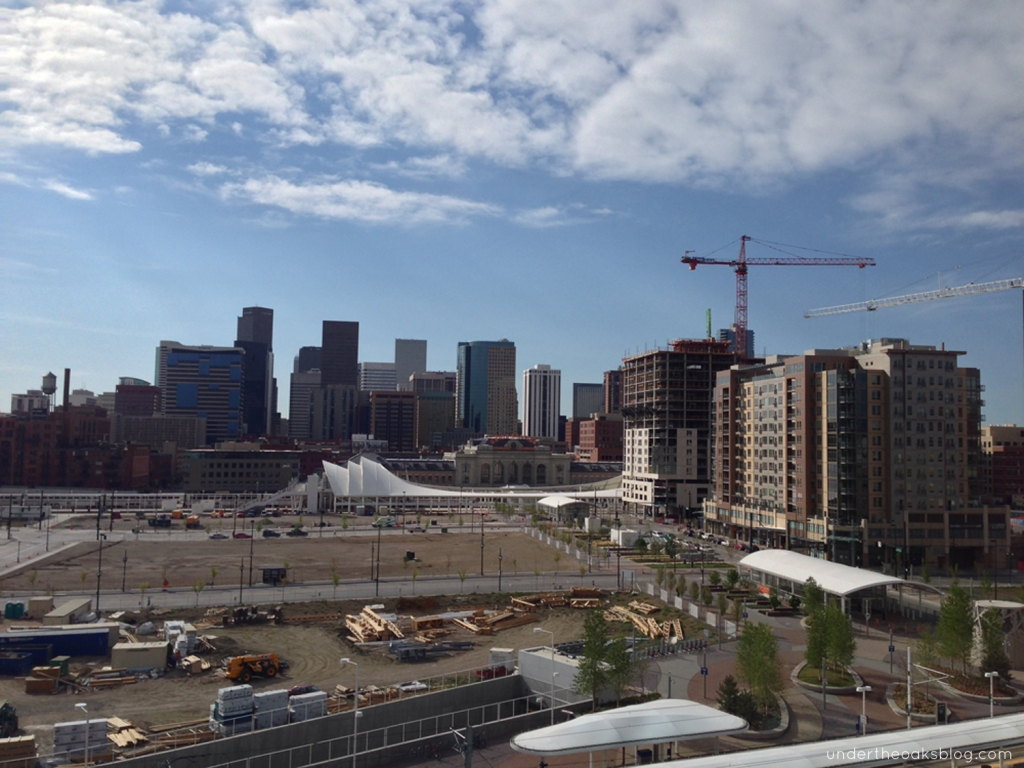 Under the Oaks blog: Hello #Denver: Mile-High Recap Pt. 1 #DenverSkyline #Colorado