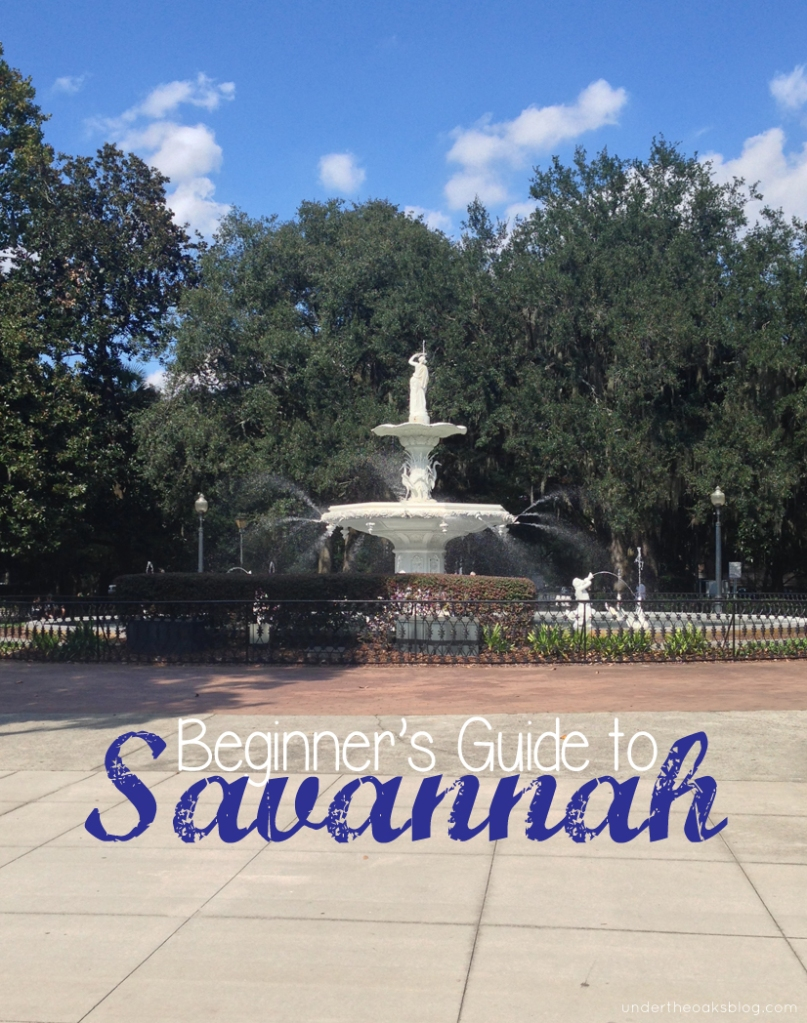 Under the Oaks blog: Beginner's Guide to Savannah #travel #forsythpark